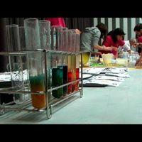 Ciencia en acción: ciencia y experimentos por y para gente joven