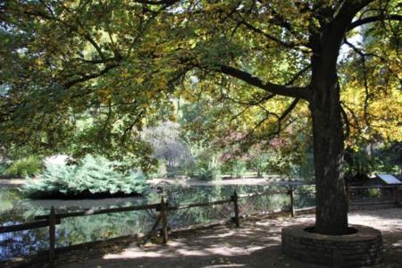 Parque-Quevedo