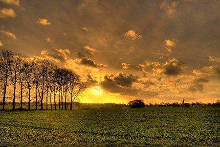 Zoutedrop Landscape