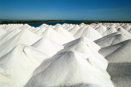 salinas de litio