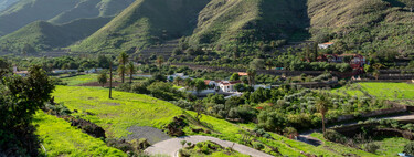 Agaete, el valle grancanario donde crece el único y cotizado café europeo (y el más septentrional del mundo)