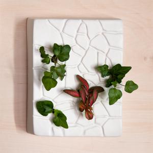 Cracked, una reinvención del florero tradicional de Andrea Génova
