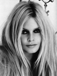 La melena de Brigitte Bardot