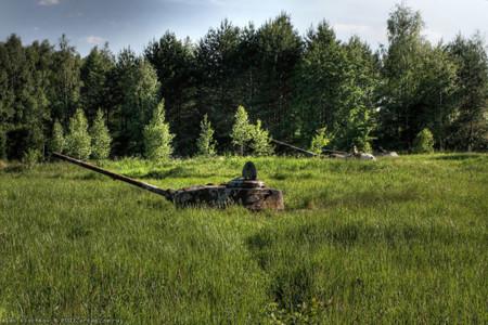 Tanques Naturaleza 6