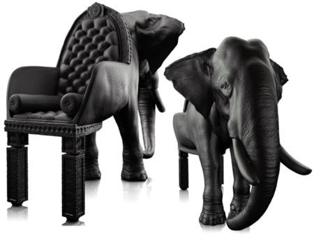 La silla elefante de Máximo Riera