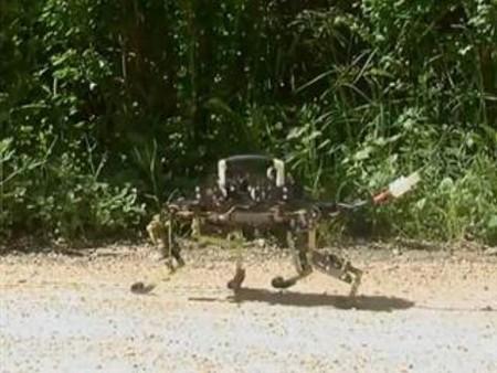 [Vídeo] El robot que se desplaza como un gato