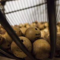 Lotería para combatir el fraude fiscal: varios países lo han hecho y parece funcionar