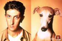 Un experimento lo demuestra: los perros sí se parecen a sus dueños