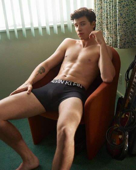 Shawn Mendes rompe internet con la nueva campaña de Calvin Klein