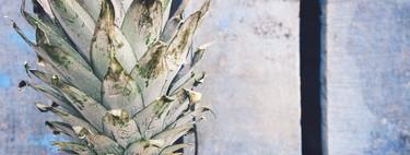 Expertos en biotecnología en México usan residuos de la piña para la fabricación de quesos
