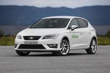 Seat León Verde, ¿un prototipo único?