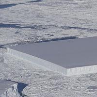 El origen de este iceberg casi perfectamente rectangular encontrado por la NASA no tiene misterio: así nació
