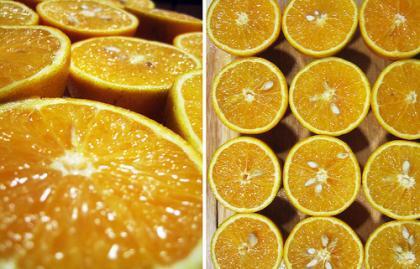 taronja de el copilot