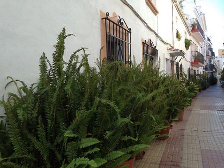 barrio nuevo marbella