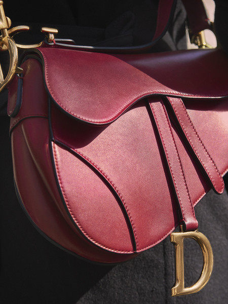 Dior Saddle Bag Autumn Winter 2018 2019 5