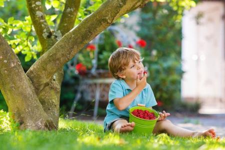 Probar nuevos alimentos sin forzar, triple screening, relactación y más... Lo mejor de Bebés y más Respuestas