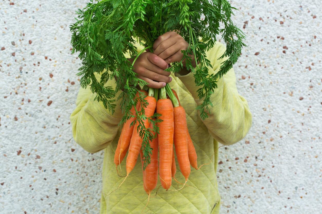 Nuestras Mejores 47 Recetas Con Zanahoria El pan de zanahoria es una receta ideal para conseguir incorporar verduras y sabor a un elemento convencional. nuestras mejores 47 recetas con zanahoria