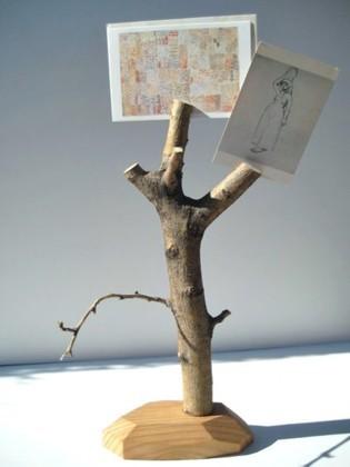 Una rama llena de recuerdos