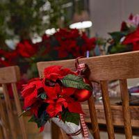 ¿Practicando para Navidad? Decora tus sillas con Poinsettias siguiendo paso a paso este DIY
