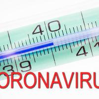 La economía española entra en colapso con el coronavirus , ¿habrá recesión?