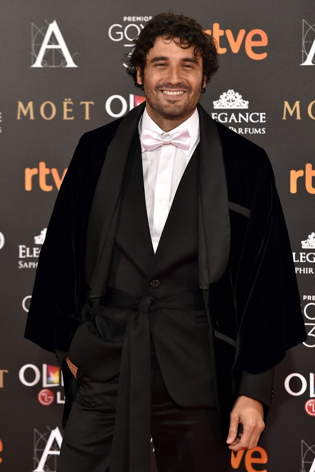 Premios Goya 27