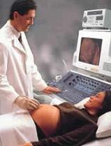 La posición del feto