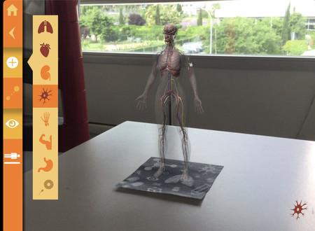 Cuerpo en 3D