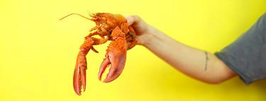 Un chef quiere ahorrar dolor a las langostas al ser hervidas. Así que les está dando marihuana