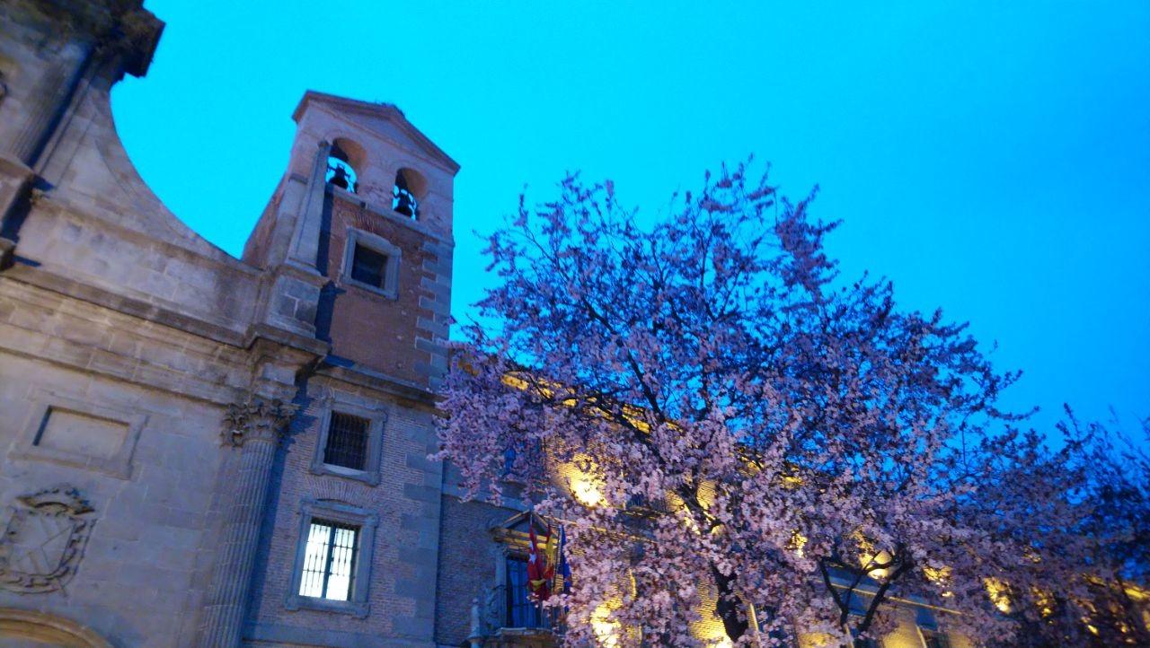 Foto de Muestras Xperia XA2 (2/27)