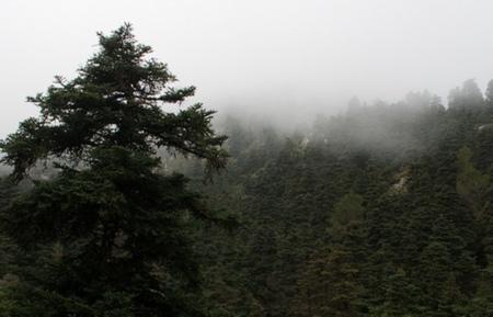 La Sierra de las Nieves y la tentación blanca