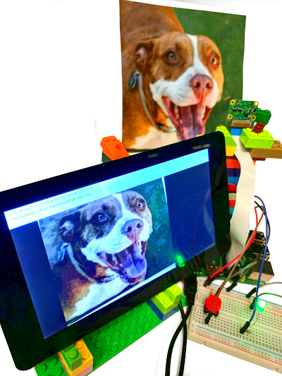 Tensorflow Sample Dog