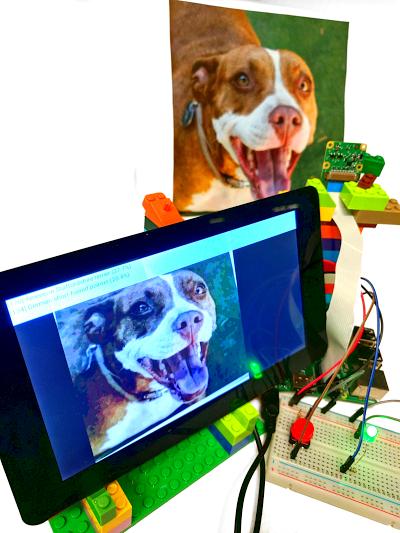Tensorflow Sample Dog
