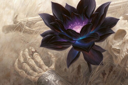 El secreto del Black Lotus de Magic: cómo una simple carta se convirtió en uno de los objetos más deseados del mundo