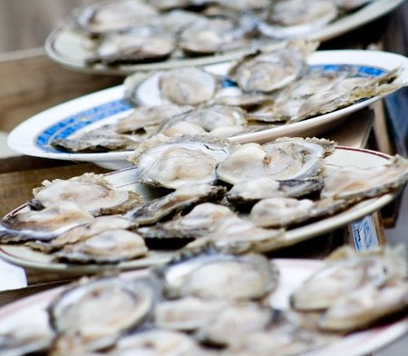 El placer de comer ostras