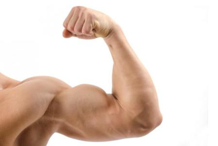 Consejos para hacer crecer nuestros brazos