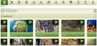 Biodiversia, plataforma interactiva del Inventario Español del Patrimonio Natural y la Biodiversidad
