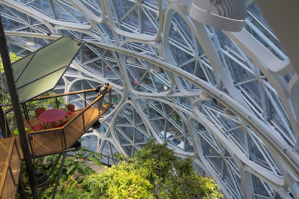 The Spheres Amazon 5