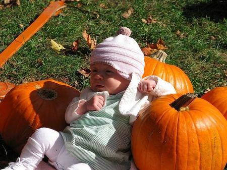 La foto de tu bebé: entre calabazas