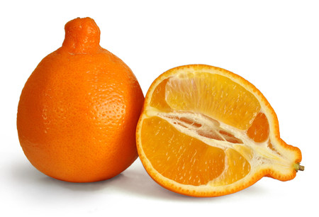 Minneola Fruit 3