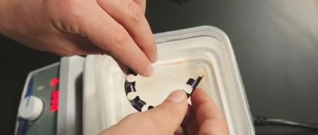 Este implante de pene tiene una erección en presencia de calor