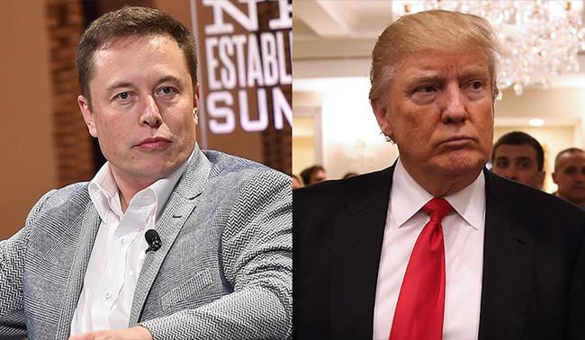 Elon Musk Donald Trump