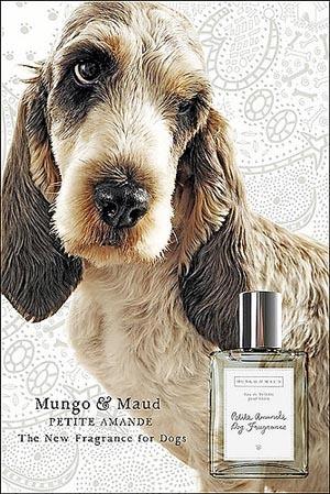 Perfume para tu mascota