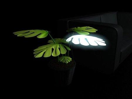 lamparas plantas