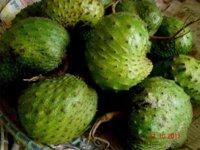 Guanábana, una fruta amiga de nuestra salud