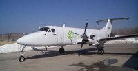 Pet Airways: la compañía aérea de las mascotas