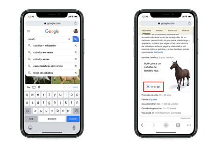 Animales De Google