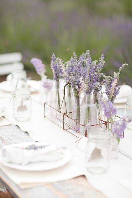 Sonoma Lavender Ktmerry 24 Copy