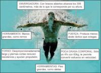 La herramienta crucial de Michael Phelps: su cuerpo