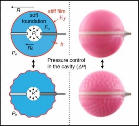 smart-morphing-surfaces-2.jpg