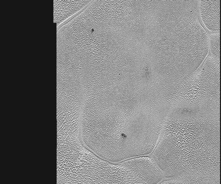 Pluton14